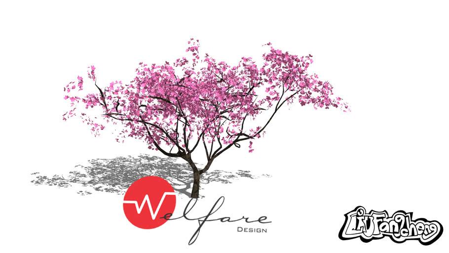 Sakura Tree 3d Warehouse
