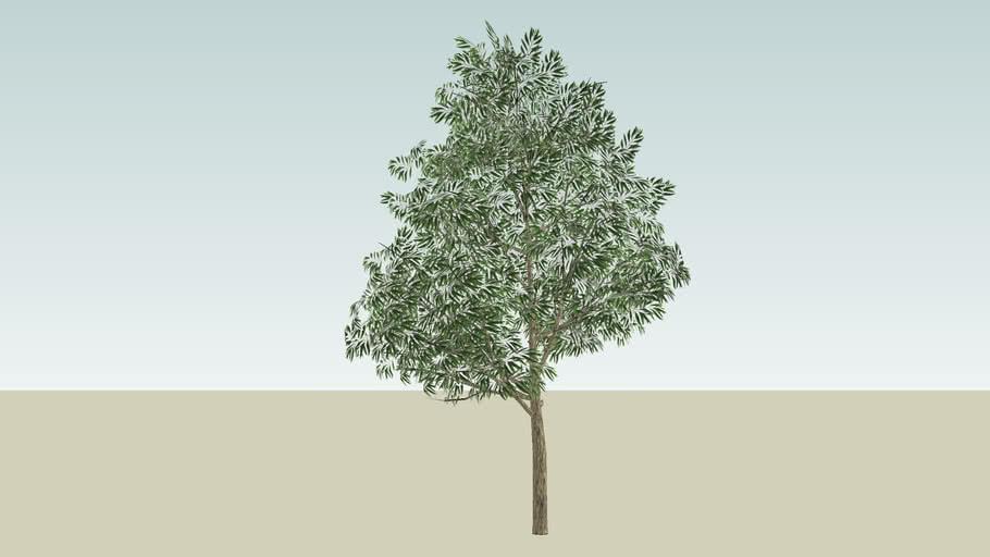 Modified Smart Tree 1