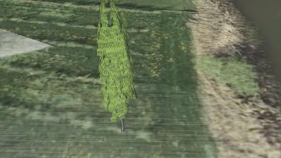 Els deel 187 boomgaard Stille Pieter