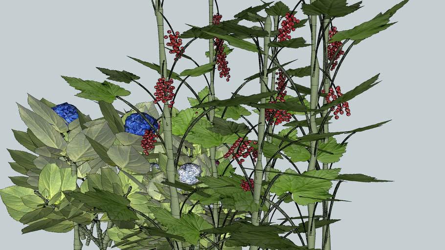 3D hortensia groseiller plante verdure jardin feuille fruit