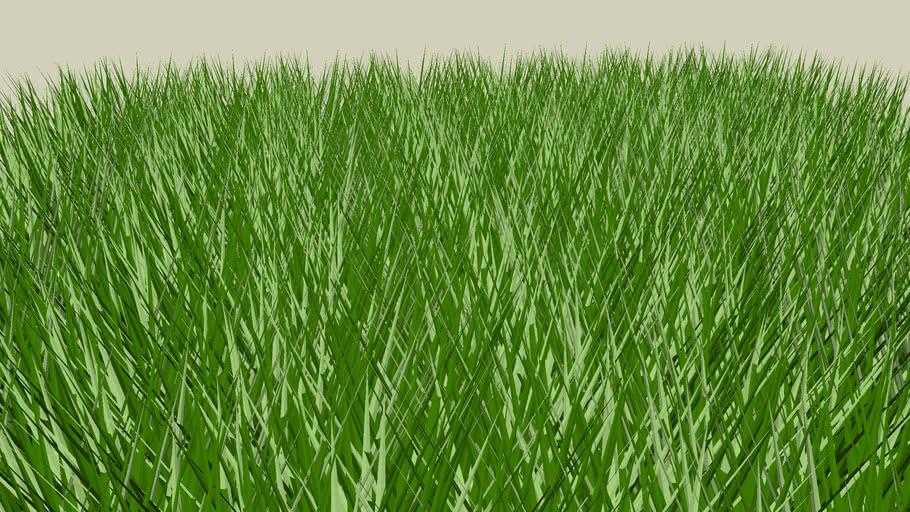 3d patch of grass