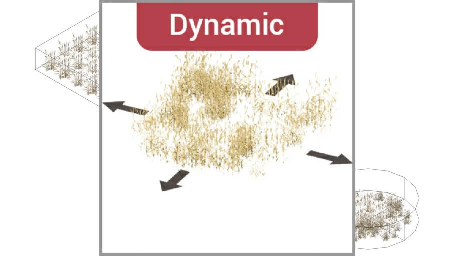 ROCKIT3D   Triticum durum 1.3 m (Wheat) dynamic