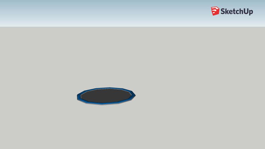 trampoline dug in