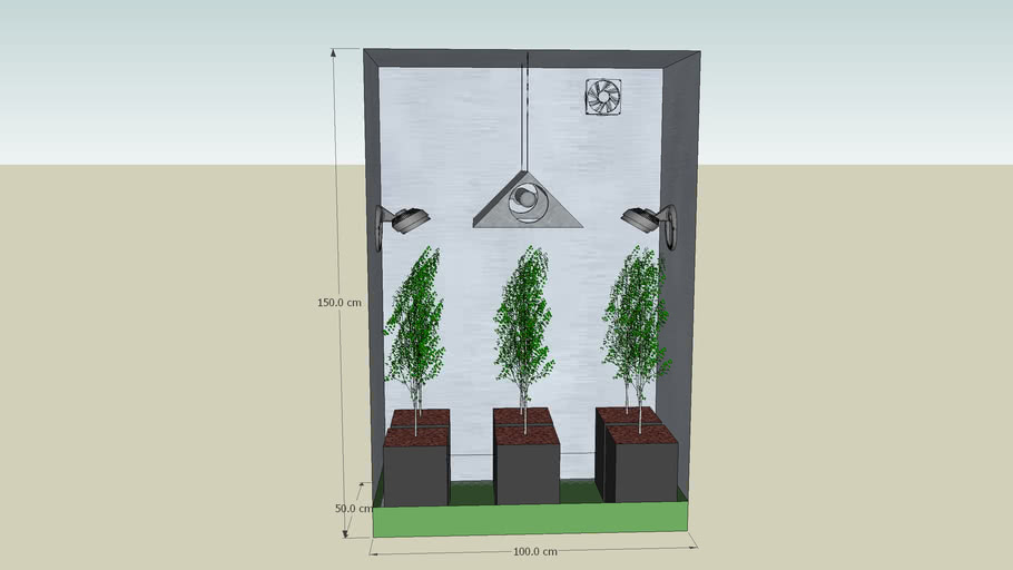 Grow Room: Box de Flora