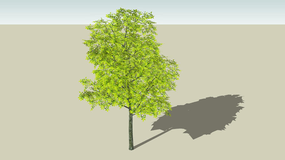 fresh leaves (modified smart tree)