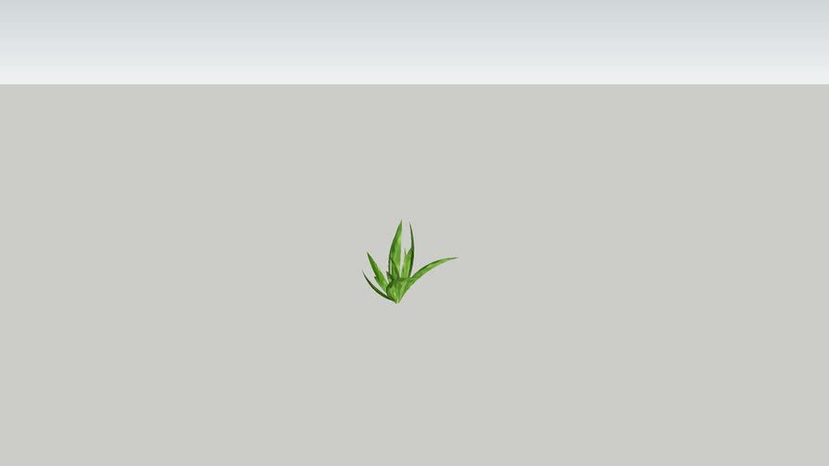 aquatic grass (tall)