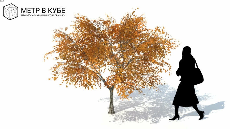 Low poly 3d tree fall autumn (040)